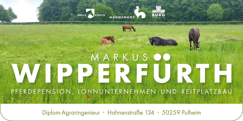 Markus Wipperfürth Logo